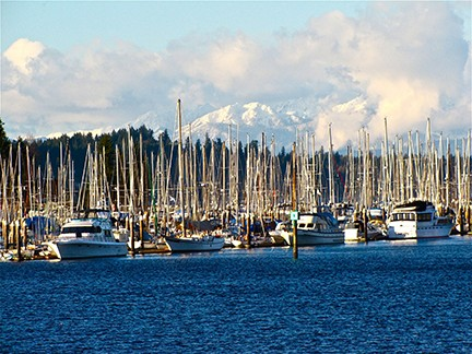 A picture of sailboats at the dock in Puget Sound.